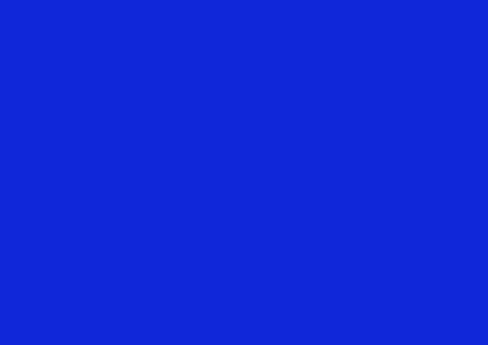bleu de travail.jpg