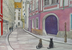 Cats in Schonlaterngasse, 2015