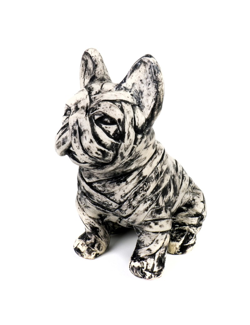 B&W French Bulldog