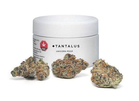 Tantalus Labs Unicorn Poop 3.5g