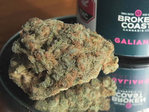Good Hoots: Broken Coast Galiano