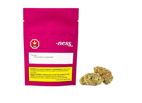 Ness Mint Sour 3.5g