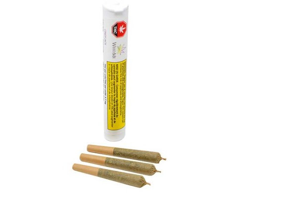 Weed Me Cindy Jack 3x 0.5g Joint