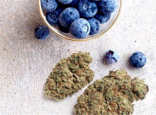 Good Hoots: Spinach Blueberry