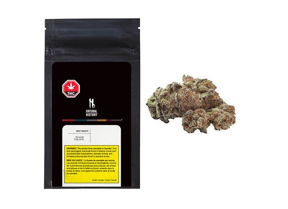 Natural History Meat Breath 3.5g