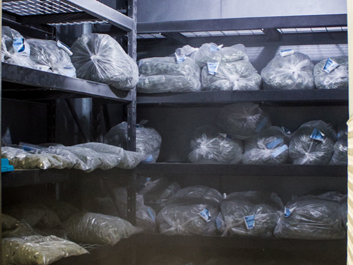 """How Should I Store My Cannabis?"""