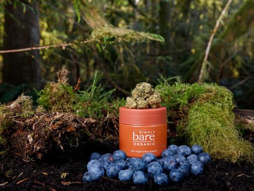 Good Hoots: Simply Bare Organic Blue Dream