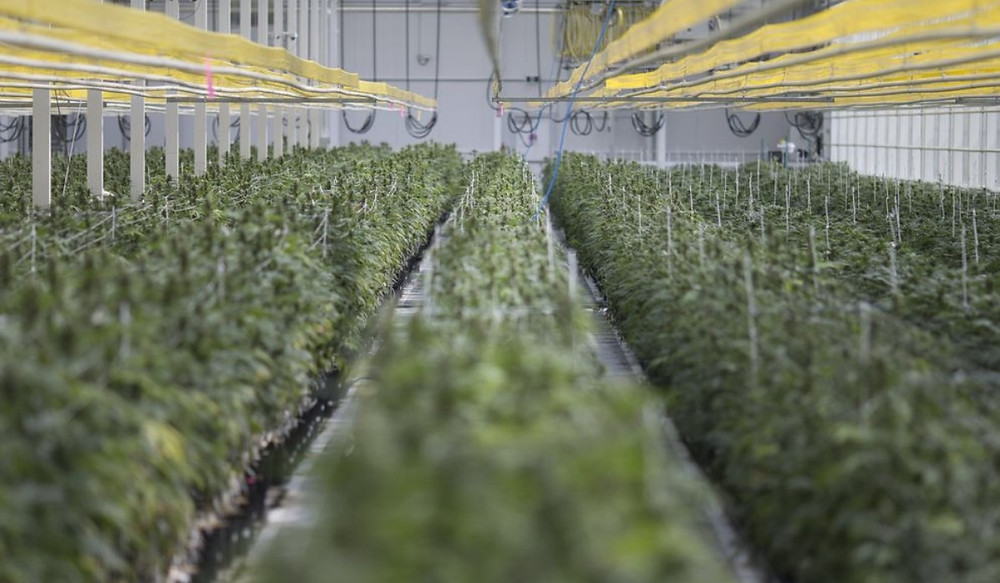 Riff Growing Facility