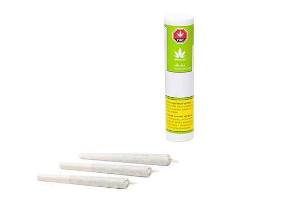 Namaste Citrique 3x 0.5g Joints