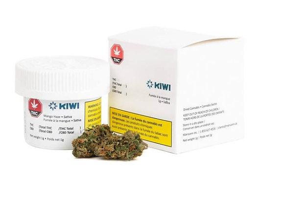 Kiwi Mango Haze 3.5g