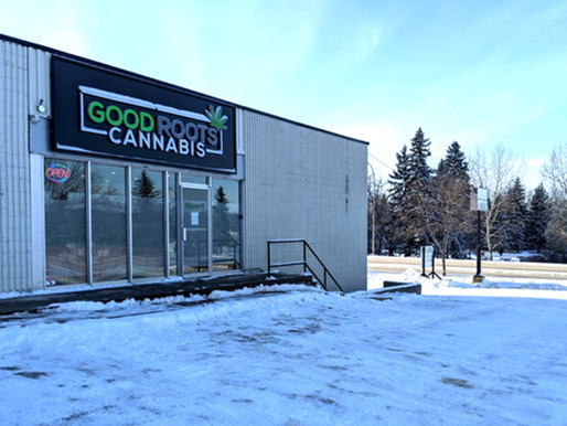 Say Hello to Our 2nd Location: Good Roots Now Open in St. Albert!