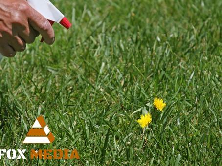 Triki użytkowe w ogrodzie - wiedziałeś o tym?