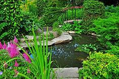 przytulny-ogrod-z-ozdobnym-jeziorem-i-mo