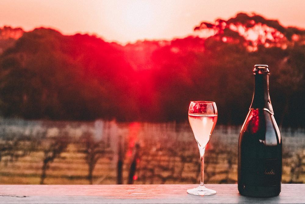 Champagne at a vineyard at sunset