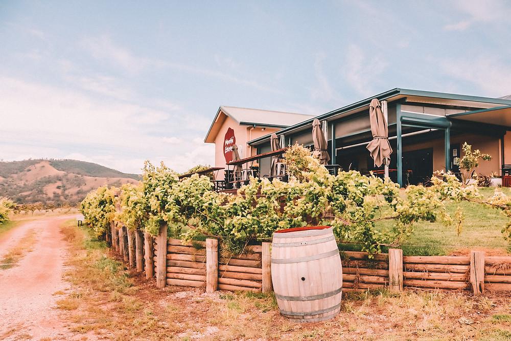 Winery cellar door