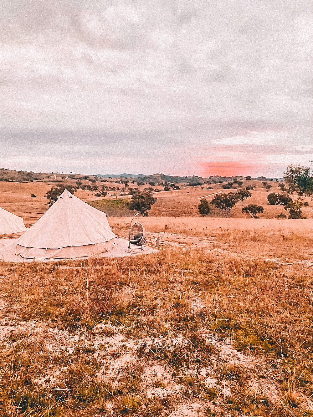 Glamping tent in Mudgee