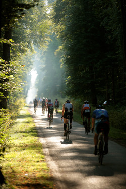 CYCLING IN THE FOREST