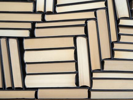 Literatur-Tipp für den anspruchsvollen Unterricht zum Thema Europa