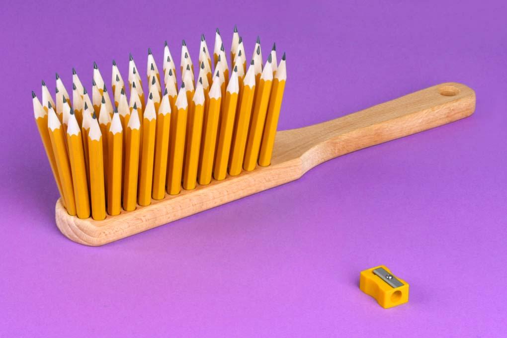 Bleistiftkehrer © Martin Roller