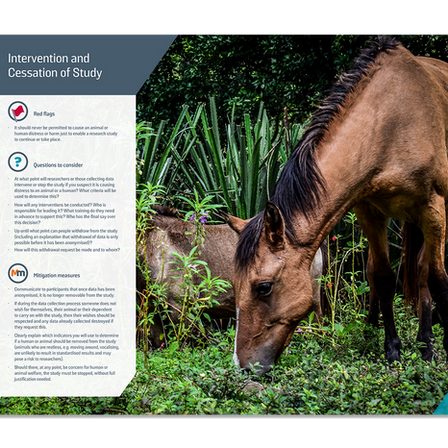 Animal welfare charity Brooke's AWERB identity and guidelines