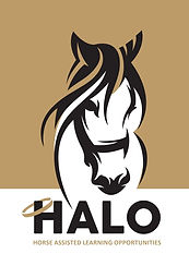 HALO logo2.jpg