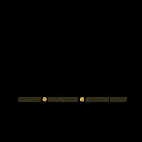 NHFI logo (1).png