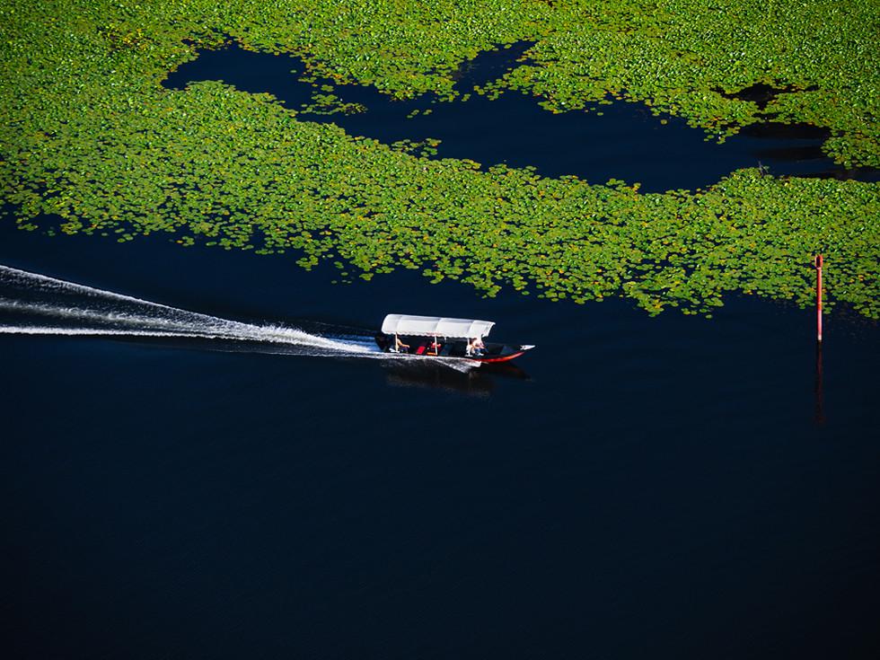Lake Skadar