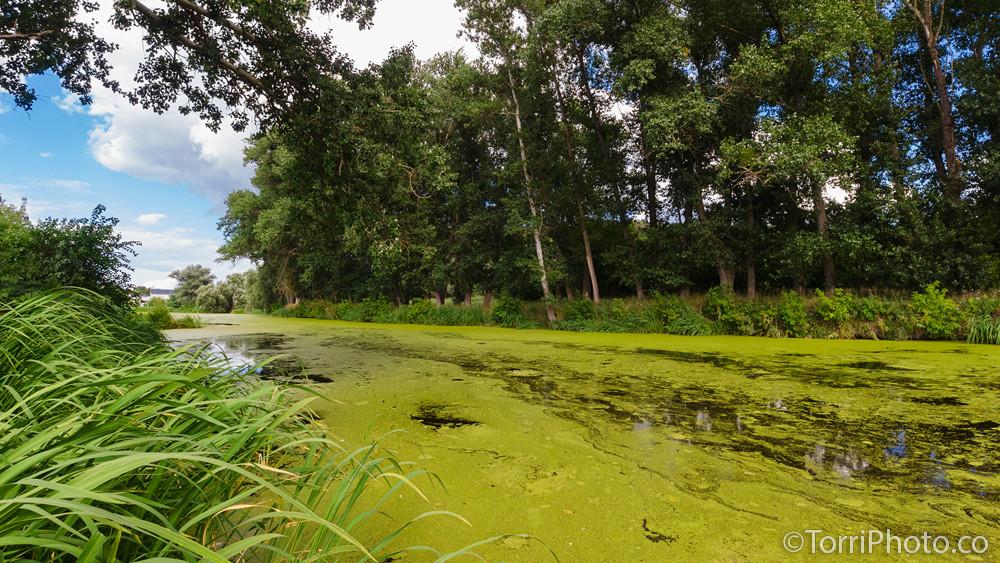 Река Тясмин, Чигирин