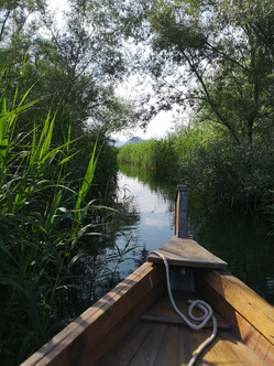 Лодочный тур по Скадарскому озеру