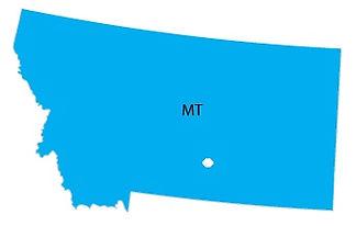MTmap.jpg