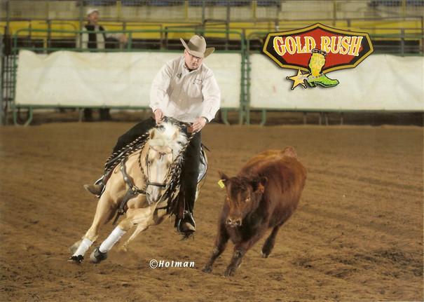 Hooch Circling Cow.jpg