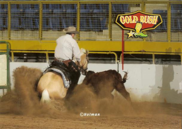 Hooch Cowhorse Turn.jpg
