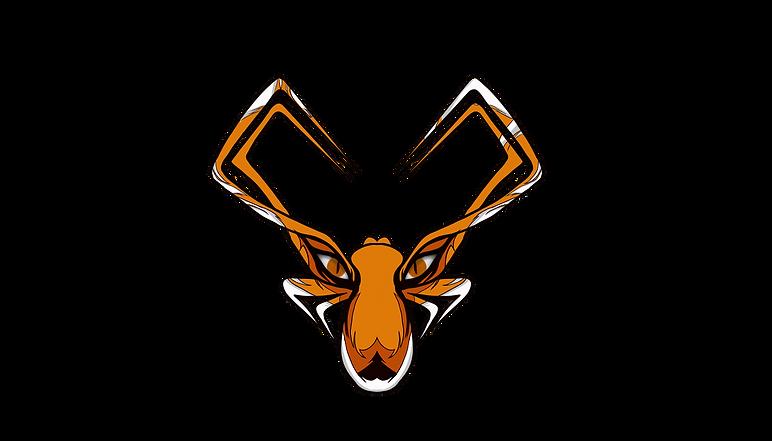 Logomuz.png