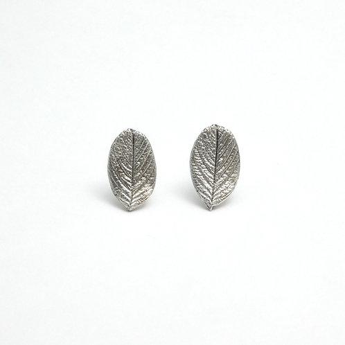 Beach Rose Leaf Earrings