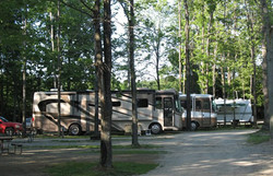 RV Sites in the shade or open