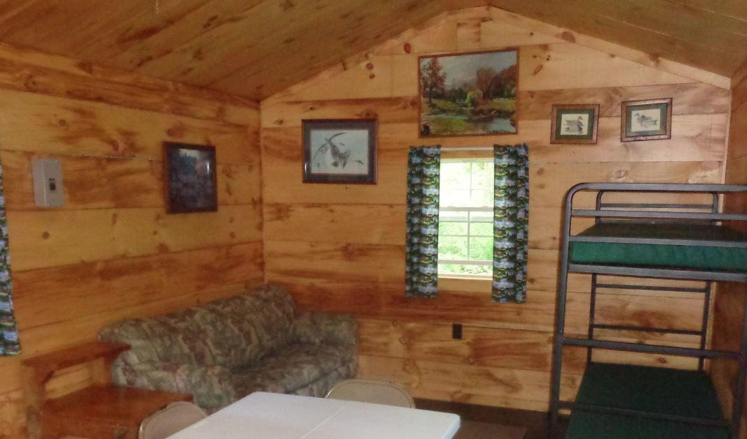 Interior Hemlock 3