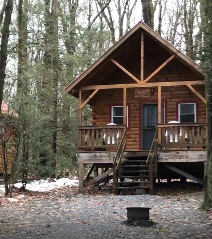 Capture from video hemlock cabin