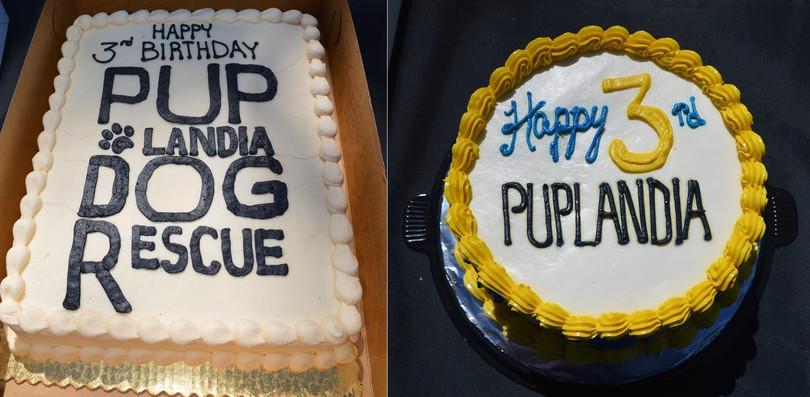 Happy 3rd Birthday Puplandia!