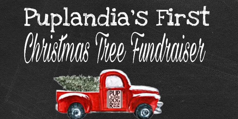 CANCELED - Puplandia's Christmas Tree Fundraiser-12/1