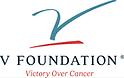 V foundation logo (1).png