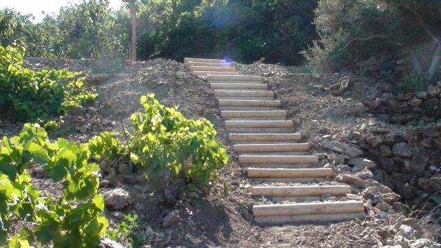 création escalier en rondins.