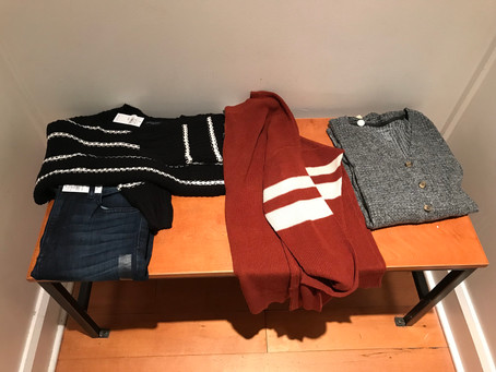 Mini American Eagle Try On Session