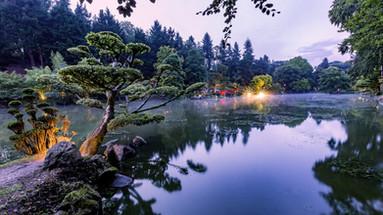 Japan dusk
