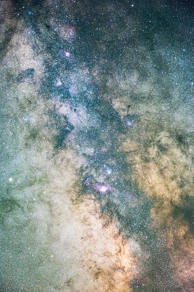 goldens stars.jpg