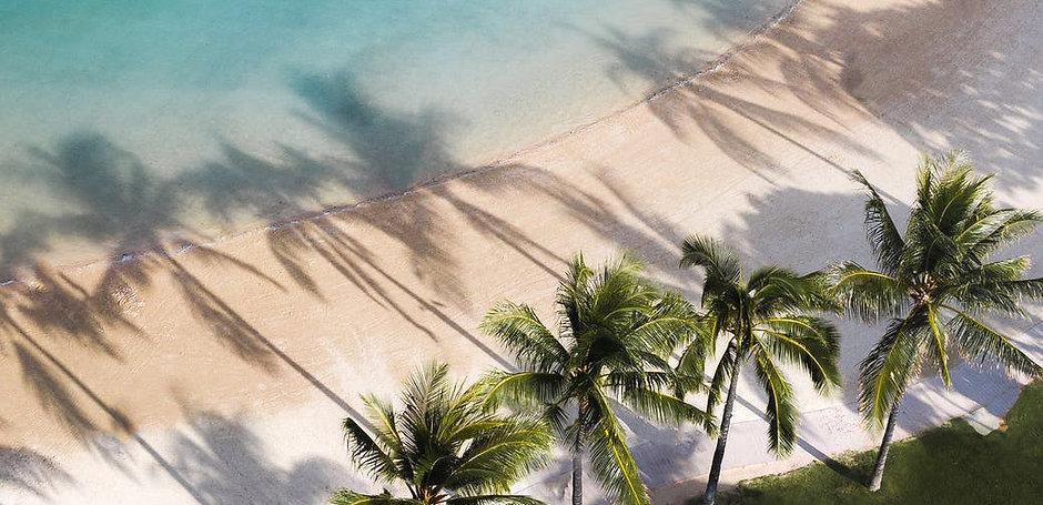Beach_pexels-photo-5326951.jpeg