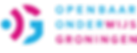 O2G2 logo-03.png