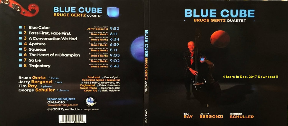 Blue Cube back cover.jpeg