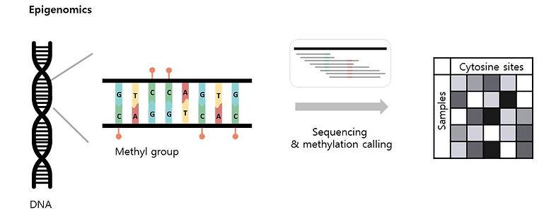 epigenomics.jpg