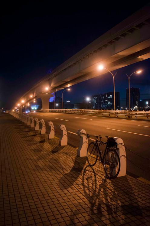 Bike end in Odaiba.jpg