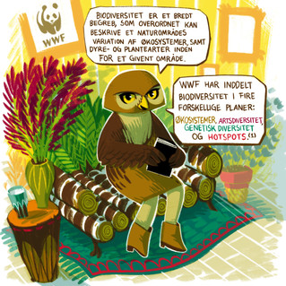 Biodiversity and WWF (2020)